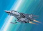 04049 - F-14D Super Tomcat (1:144).